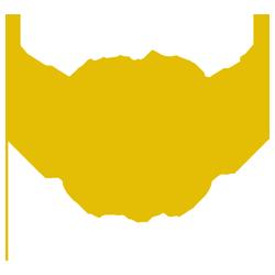 Liverpool Roller Birds